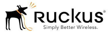 partner-ruckus-small.png